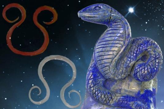 Rahu and Ketu Vedic Astrology - serpant